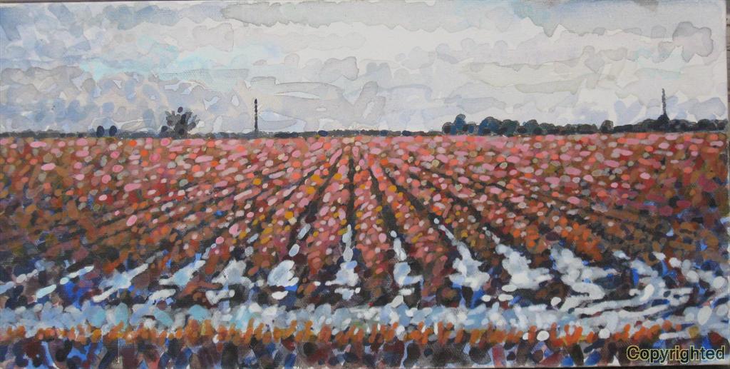 A winter field in Desha County near Hwy 65 South.